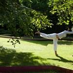 Jógával visszanyerhető az egyensúlyérzék szélütés után