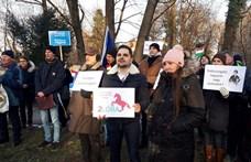 A tévémaci kiszabadítását követelték a Momentum-közeli müncheni tüntetésen
