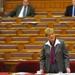 Tandíj, nem tandíj: a felsőoktatásról vitáznak a parlamentben