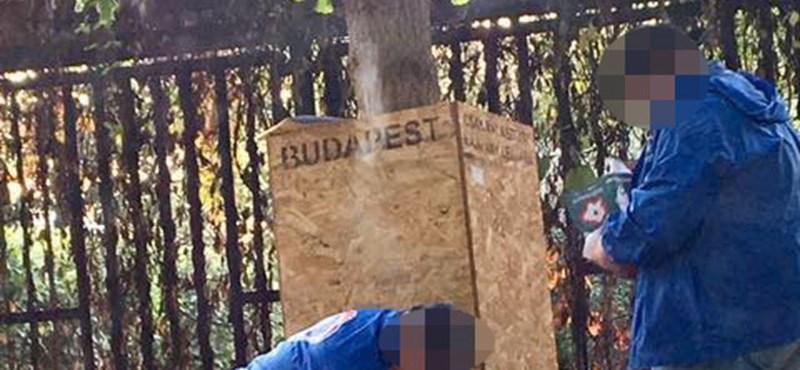 Puzsérék szerint a DK aktivistái szervezetten tépkedik a plakátjaikat