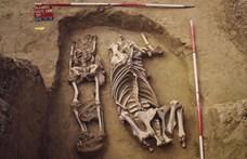 Ripityára törte a combcsontját az az avar-kori lovas, akinek most mutatták be a sírját