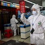 Éppen egy éve jelentették az első koronavírusos halálesetet
