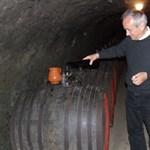Oscar-díjas magyar borász