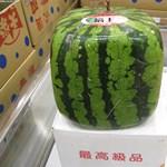 Már árulják a kocka alakú dinnyét, de megenni nem lehet