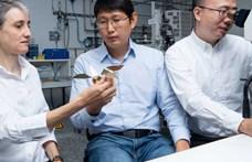 Aprócska robotmadarat fejlesztettek ki svájci kutatók, nanomágnesekkel tudják irányítani