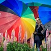Ítélet született a körúti homofób támadás ügyében