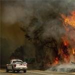 Már legalább öt halálos áldozatuk van a kaliforniai tűzvészeknek