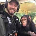 Kimenekített csimpánzbébi a pilóta ölében - videó
