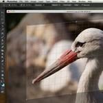 Photoshop CS6 beta - már félmillió letöltés