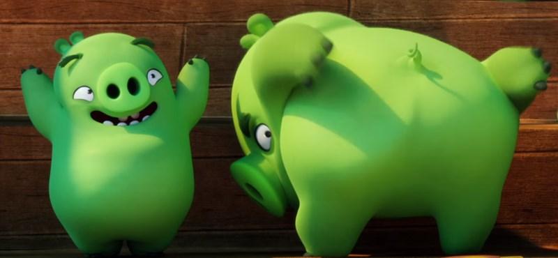 Az ENSZ az Angry Birds karaktereivel üzent a boldogság világnapján