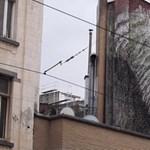 Brüsszel új kedvence az óriási fali pénisz - videó