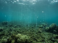 700 000 évre néztek vissza a tudósok: hogyan változott az óceánok hőmérséklete?