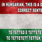 Ezeken a fotókon röhög az internet: ilyen nehéz (és különc) a magyar nyelv?