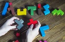 Egy kutatás bebizonyította, hogy genetikai okai vannak az autizmusnak