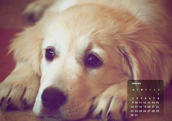 naptár háttérnek Tech: Így tehetünk naptárat a háttérképünkre, ingyen és gyorsan  naptár háttérnek