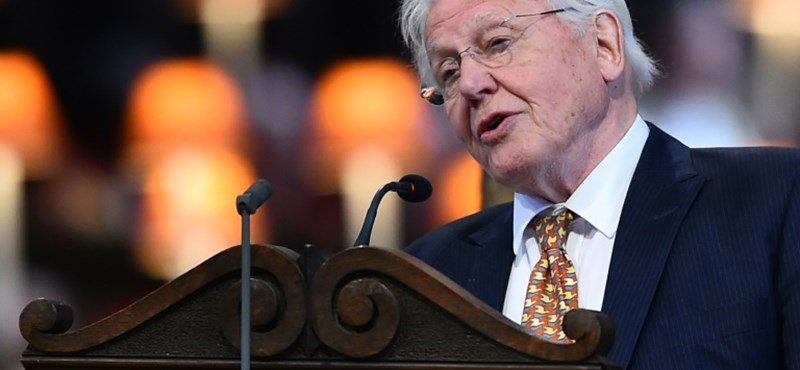 David Attenborough elárulta, mit tart a világ legnagyobb problémájának
