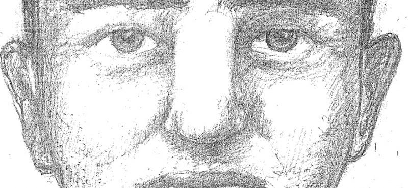 Fantomkép: Kétszer csapott le ugyanott a szexuális erőszaktevő