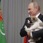 Kegyelemért esedezik Putyinhoz a bebörtönzött rendező anyja