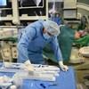 Átláthatatlan káosz lett abból, hogy a kormány hozzányúlt az egészségügyhöz