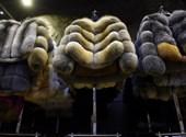 Tilos lesz szőrmét árulni a budapesti vásárokon
