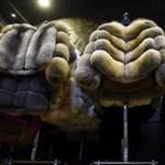 Izrael a világon elsőként tiltja be a szőrmekereskedelmet