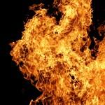 Az én hetem: Karafiáth Orsolya írni ment, tűzzáporban találta magát