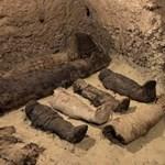 Több tucat múmia került elő Egyiptomban egy sírkamrából, úgy 2300 évesek
