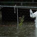 Tudja, miért volt ennyire pusztító a Florence hurrikán? A tudósok már sejtik
