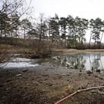 Leállt a turizmus, újra megtelt termálvízzel a kiszáradt püspökfürdői tó
