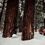 10 tipp, hogyan autózzunk télen