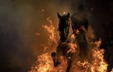 Így vágtattak át lovakkal a lobogó máglyán (fotók)