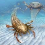 Agresszív óriáslények népesítették be egykor a tengereket