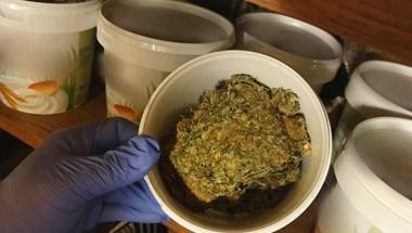 14 millió forintnyi drogot találtak a VI. kerületi dílereknél