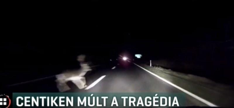 Centiken múlt, hogy nem okozott tragikus balesetet egy szarvas - videó