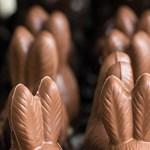 Elbukott egy csokinyúl a teszten