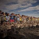 Kihirdetett ponthatárok és újabb katasztrófák a hét képein - Nagyítás-fotógaléria