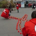 Eltűnt személyeket kereső mobilalkalmazást fejlesztettek magyar szakemberek
