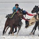 Járvány, verseny a holdkőért és a fejetlen kecskéért – az AFP legjobb idei képei