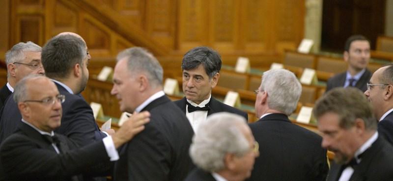 Goodfriend elment a parlamentbe