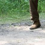 Hazaindult Afrikából Zoltán, a magyar fekete gólya