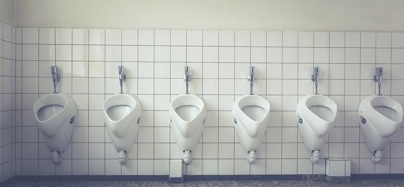 A Kétfarkú új alkalmazása megmutatja, hol vannak ingyenes nyilvános wc-k az országban