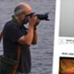 TOP 5 ingyenes fotómegosztási lehetőség az interneten