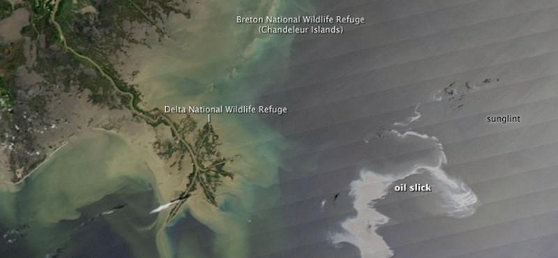 Felgyújtják a Mexikói-öbölben úszó olajfoltot - fotók