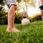 Gyerekkori elhízás: testvérek, barátok segíthetnek
