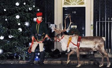 Van az a pénz, amiért megéri külföldön maradni karácsonykor