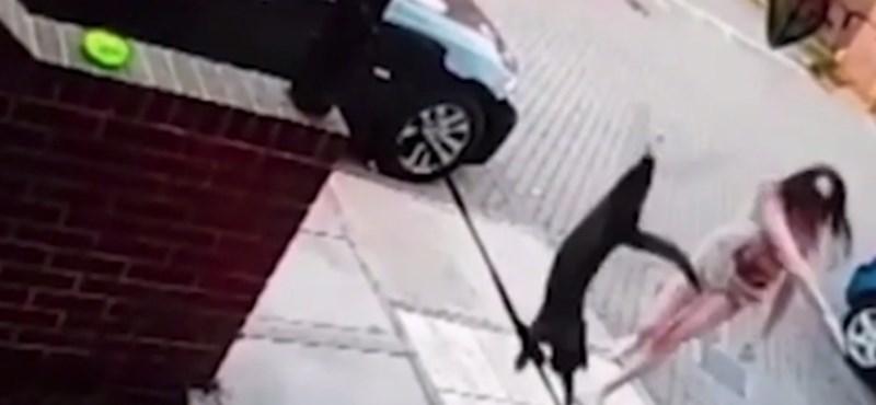 Hozzávágta egy nő a szomszédok ajtajához a macskájukat, a kamera meg felvette