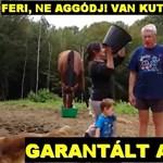 Gyerekeket ijesztget, tanyát gyújt fel: paródiaoldal Falus Ferencről