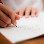 Húsz oktatási és civil szervezet kéri az új alaptanterv bevezetésének halasztását