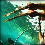 A világ legszebb akváriumai