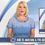 """""""Kamuújságírók, akik között sok az agresszív seggnyaló"""" – máris kifordították a TV2 riportját"""